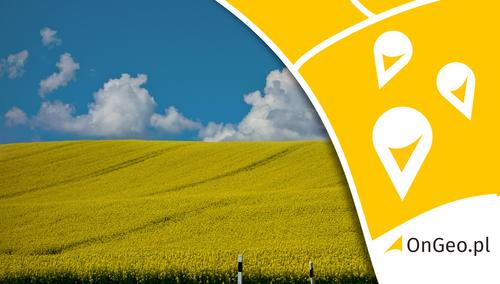 Nieruchomość Dzierżawa gruntu pod farmę fotowoltaiczną – na co zwrócić uwagę?